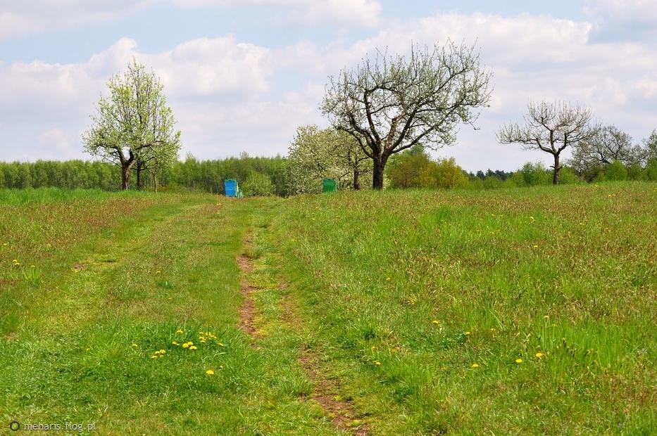 Małopolska wiosna