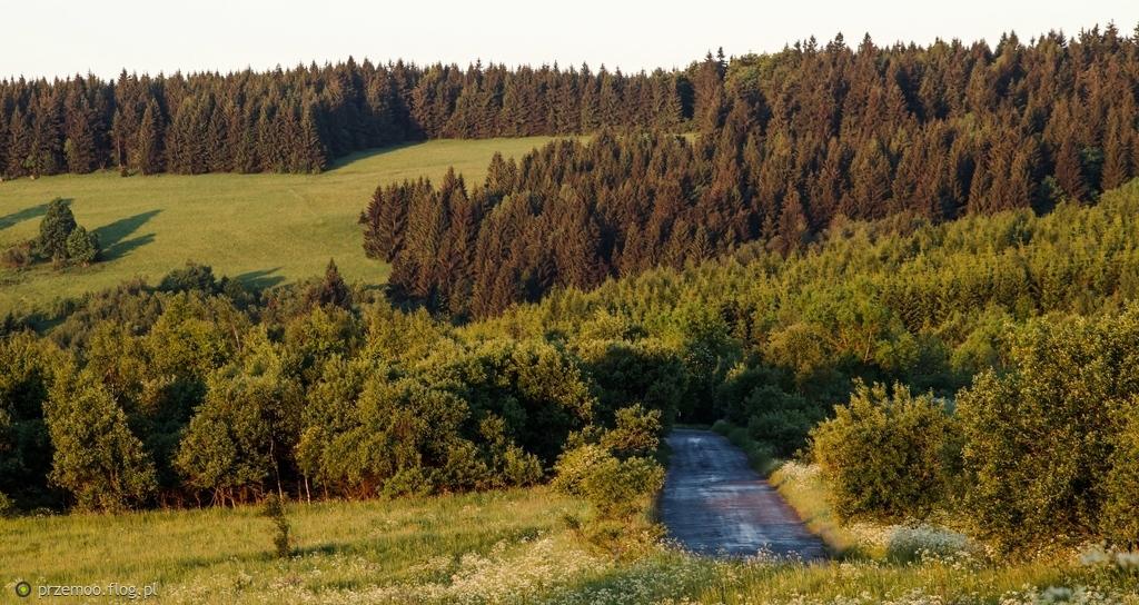 s15.flog.pl/media/foto/10179605_laki-gniewoszowskie-o-wschodzie-slonca.jpg