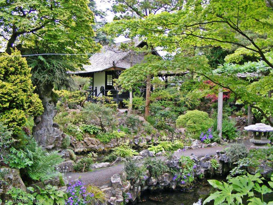 Japońskie ogrody.